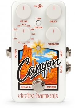 Canyon Delay & Looper